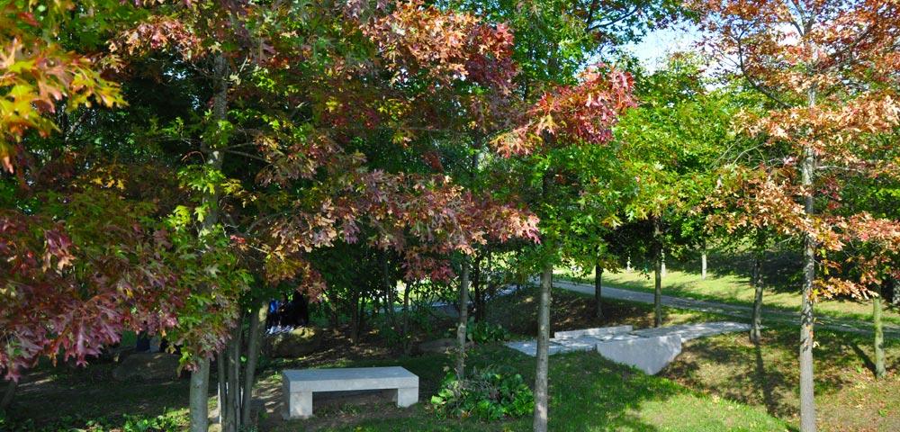 L arboretum du parc forestier du bois de l toile gagny for Piscine de gagny